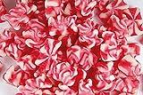 Erdbeer-Sahne Bärchen, mit Erdbeer-Sahne Geschmack, rot-weiß, im 500g Beutel