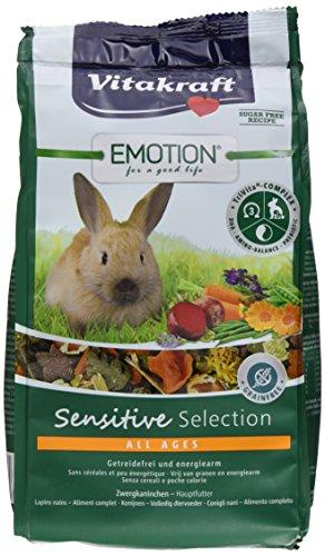 Alle Kleie Getreide (Vitakraft Alleinfutter für Zwergkaninchen, Ausgewogene Futtermischung, Getreidefrei, Emotion Sensitive Selection (5 x 600g))