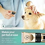 Dog Clippers, Professional Electric Cat Dog Grooming Clippers Kit with 4 Comb/Scissors/Nail File/Claw/Hair Clippers… 11