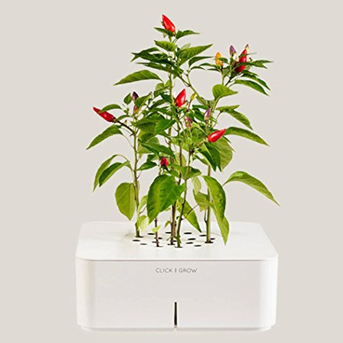 Click & Grow Smartpot Chili Pepper Indoor Grow Kit