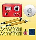 Eleoption Brandmalerei-Station, 220V, 50W, Multifunktionswerkzeug für Brandmalerei