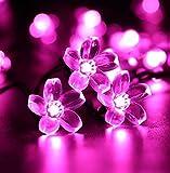 Ghope Solar Lichterkette 7m 50 LED Pfirsichblüte Außenlichterkette Wasserdicht mit 8 Modussteuerung Weihnachtsbeleuchtung Beleuchtung für Weihnachten,Haushalt, Außen, Garten, Hochzeit (Pink)