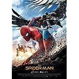 Tom Holland (Actor), Robert Downey Jr. (Actor), Jon Watts (Director)|Clasificado:No recomendada para menores de 7 años|Formato: Blu-ray Fecha de lanzamiento: 22 de noviembre de 2017Cómpralo nuevo:  EUR 20,99  EUR 20,15