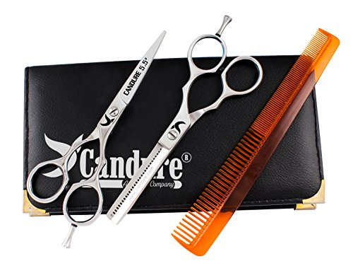Set di Forbici Professionali da Parrucchiere Barbiere 14cm - Argento - Nuove con Astuccio Incluso
