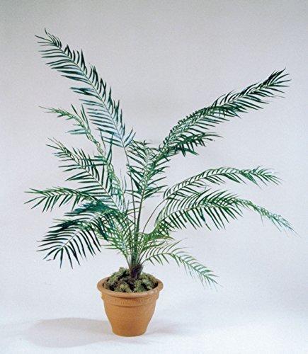 Areca Palme grün, H:165cm* 792 Blätter, drahtverstärkt, Kokosfaser/Kunststoff !! Topf NICHT im Lieferumfang enthalten !!