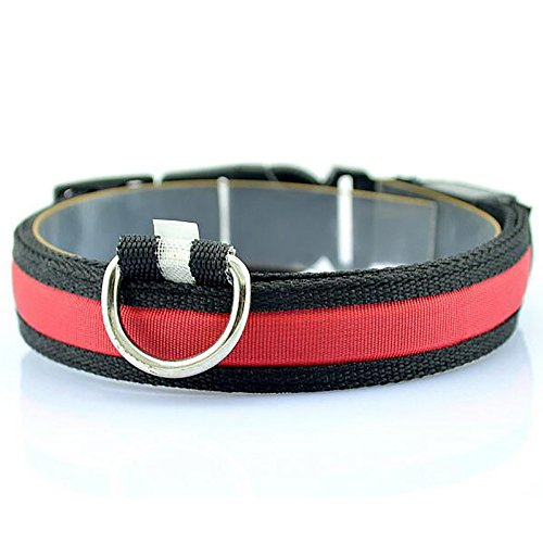Berrose-LED Nylon Haustier Hund Sicherheit Nacht Halskette Anti-verlorener blitzender Glitter Halsbänder Super Bright USB Rechargeable Safety Dog Halsband, komfortable verstellbar Pet Halsband