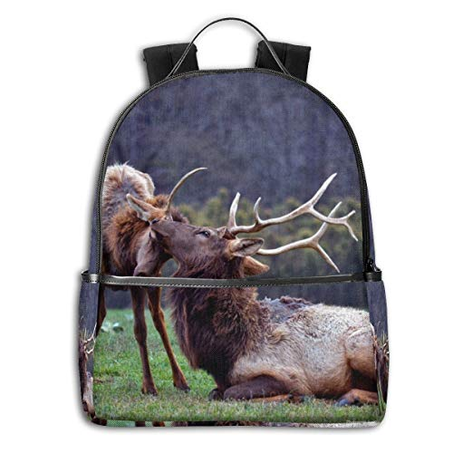 Tier-Tiere Baby Tiere Hirsch Elch National Geographic Multifunktional College Bag Studenten Casual Daypack Reise Rucksack Schule Laptop Bookbag -