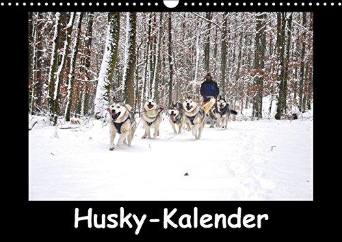 Husky-Kalender (Wandkalender 2018 DIN A3 quer): Sibirische Huskies (Monatskalender, 14 Seiten ) (CALVENDO Tiere) [Kalender] [Apr 01, 2017] andiwolves, k.A.