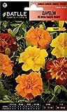 Semillas de Flores - Clavelón de la India Tagete enano - Batlle