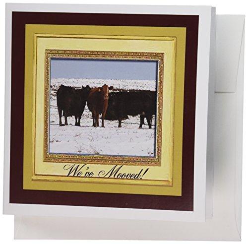 3dRose Gc_34185_2 Grußkarten, Kuh-Design, 15,2 x 15,2 cm, 12 Stück - Kuh Grußkarten