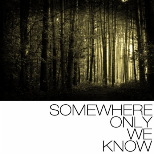 somewhere-only-we-know-decimal-eon-remix
