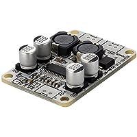 daorier TPA3110pbtl Mono Digital de amplificador de 30W Single Channel Power Amp Módulo DC 8–26V