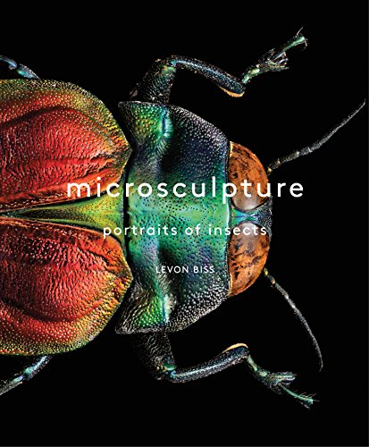 Microsculpture: Portraits of Insects (English Edition)