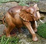 Elephant Holz schöner großer Glücks Elefant12