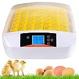 Beautytalk Inkubator Brutapparat intelligent Vollautomatischer Brutkasten mit 56 Eier(DE Lager)