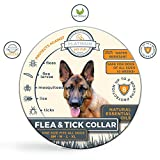 Platinum Pet Club Natural Flea and Tick Collar for Dogs | Flea