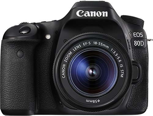 Canon EOS 80D 1263C034 SLR-Digitalkamera (24,2 Megapixel, 7,7 cm (3 Zoll) Display, DIGIC 6 Bildprozessor, NFC und WLAN, Full HD, Kit inkl. EF-S 18-55mm 1:3,5-5,6 IS STM) schwarz -