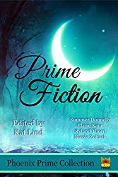 Prime Fiction (Phoenix Prime Anthology) (English Edition)