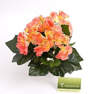 Begonias Artificiales