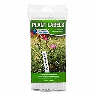 Gardener 's Blue Ribbon t022b Kunststoff Pflanze Etiketten (50Pack), 15,2cm Bright Weiß