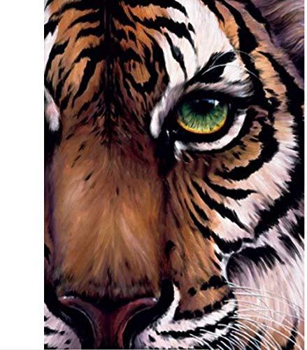 XADITON Malen nach Zahlen Kits für Erwachsene und Kinder, Tier Tigerauge, Ölfarbe Digitale Zeichnung Leinwand mit Pinsel Weihnachtsschmuck Geschenke -16 * 20 Zoll Rahmenlos