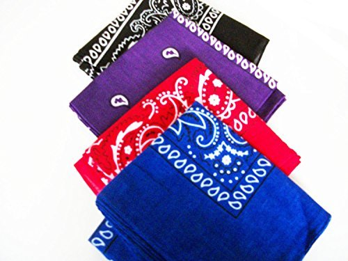 Four Pack Paisley Design Bandana...