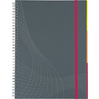 AVERY Zweckform 7017 Notizbuch notizio (A4, Kunststoff-Cover, Doppelspirale, kariert, 90 g/m²) 90 Blatt, grau, 1 Stück