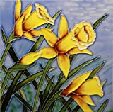 Per piastrelle foto sottopentola Daff. Bloom 8x 8by Benaya by welshsuperstore welsh gifts
