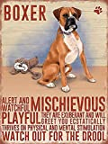 Wandschild Boxer Hund Fun Schild 20,3x 15,2cm Made To Make You Smile + Gratis Lufterfrischer.