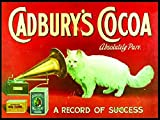 Cadbury's Cocoa Absolutely Pure - A Record Of Success - Mini Metal Wall Sign