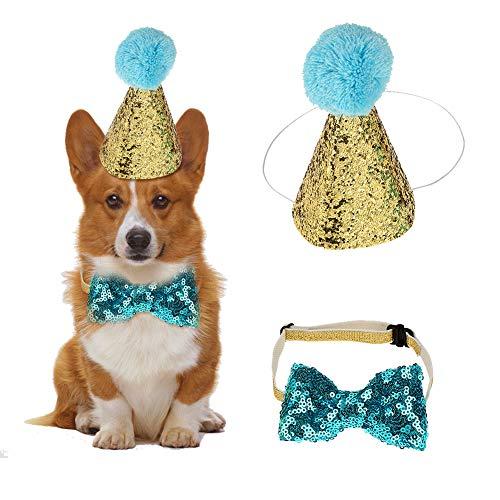 HEEPDD 2 Stück Geburtstag Hut, Haustier Hund Katze Geburtstag Caps Wiederverwendbare Headwear Bowknot Party Kostüm perfekte Hund oder Welpen Geburtstagsgeschenk (Blau) -