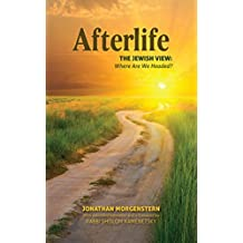 Afterlife: The Jewish View: Where are we headed? (English Edition)