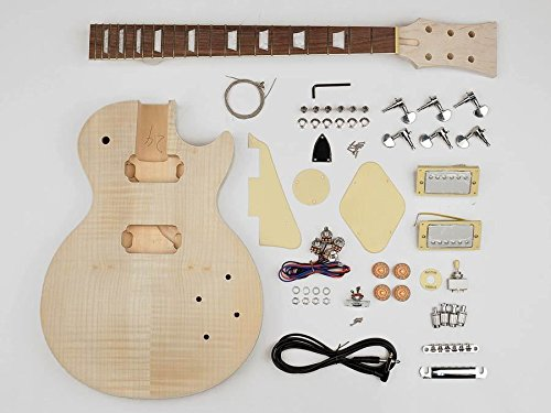 les-paul-guitar-built-your-own-hardware-guitar-builder-kit-carved-maple-top-new