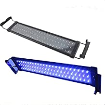 Glighone Lámpara de Acuarios y Peceras LED Luces para Plantas Sumergible y Estanques 6W de LED por 30 en Blanco 6 en Azul, Enchufe Europeo
