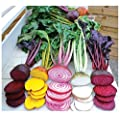 BEETROOT - RAINBOW MIX - 6 GRAM ~ APPROX 500 FINEST SEEDS : everything 5 pounds (or less!)