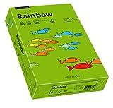 Papyrus 88042673 Druckerpapier Rainbow 80 g/m², A4 500 Blatt intensivgrün