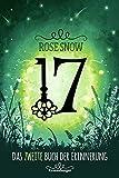 17, Das zweite Buch der Erinnung (Die Bücher der Erinnerung, Band 2)
