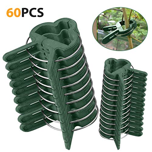 Pflanzen Clips 60 Stk extra groß - Mopalwin Pflanzenklammern stabile Clip für Pflanzen Sicherung...