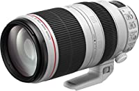 Canon EF 100-400 mm f/4.5-5.6L IS II USM Lens for Camera - Black/White