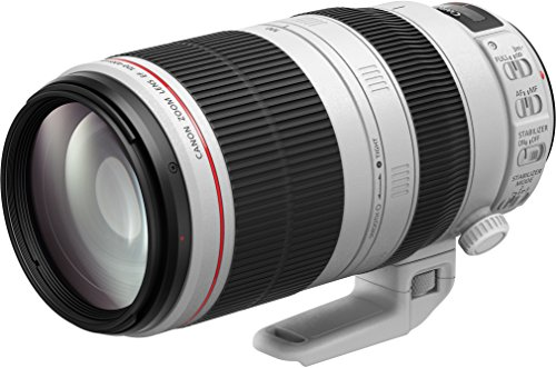 Canon EF 100-400 mm f/4.5-5.6L IS II USM Objektiv