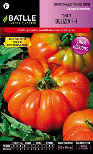 semillas-batlle-tomate-delizia-f-1
