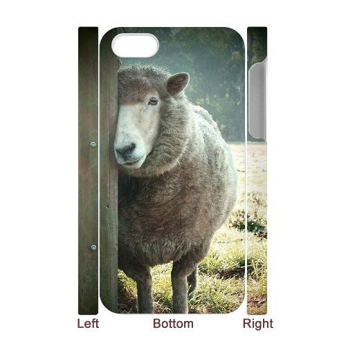 LP-LG Phone Case Of Sheep For Iphone 5C [Pattern-6] Pattern-5