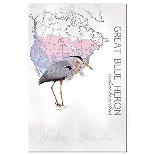 Baumfreie Grüße econotes blanko Note Karten, passende Briefumschläge, blanko Stationäre Card Set, 10,2x 15,2cm Kanadareiher, 12Stück (fs66574)