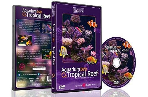 Aquarium DVD | TROPISCHES RIFF mit 4K ULTRA HD Download mit Natürlichen Geräuschen und Entspannender Musik (Download Hd)