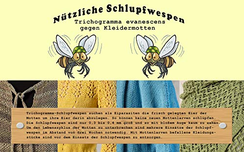 VGO... Schlupfwespen ✅ 3 Kärtchen mit je 2000 Schlupfwespen zur Bekämpfung von Kleidermotten Einzellieferung