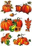 Unbekannt 7 TLG. Set _ Fensterbilder -  Kürbisse & Herbst Laub  - Herbst / Blätter - Laubblätter - statisch haftend - selbstklebend + wiederverwendbar / Sticker Fenst..