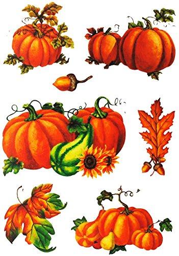 Unbekannt 7 TLG. Set _ Fensterbilder -  Kürbisse & Herbst Laub  - Herbst / Blätter - Laubblätter - statisch haftend - selbstklebend + wiederverwendbar / Sticker Fenst.. -