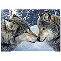 TianMai Hot New DIY 5D Diamond Painting Kit Crystals Diamond Embroidery Rhinestone Painting Pasted Paint by Number Kits Stitch Craft Kit Home Decor Wall Sticker - Two Snow Wolves, 30x40cm