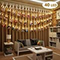BOLWEO Battery Operated LED Photo Clips Peg String Lights from BOLWEO