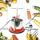 CELMS TORCHIETTO Premitutto capacità di Premitura 3kg con Certificazione Alimentare Ferro e Acciaio Inox 430 Made in Italy per Pomodori Melanzane Ortaggi Succhi Frutta e Olio (3kg)